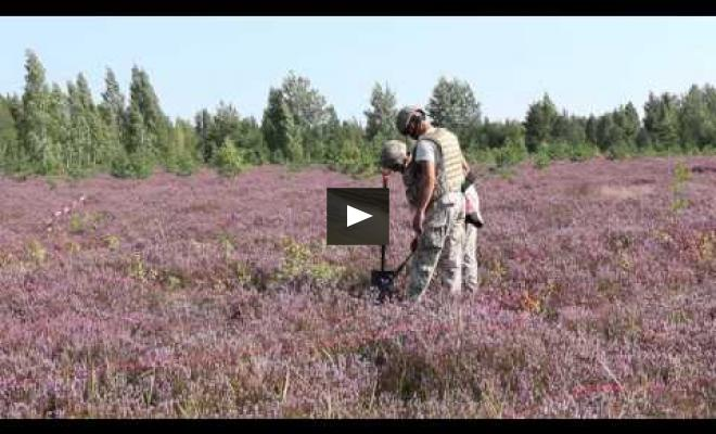 Embedded thumbnail for Removing unexploded ammunition from the heath areas to be restored